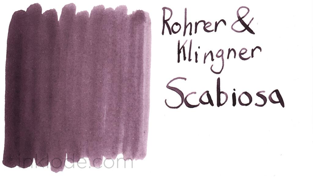 Rohrer & Klingner Scabiosa